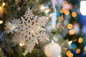 12 Healthy Days of Christmas